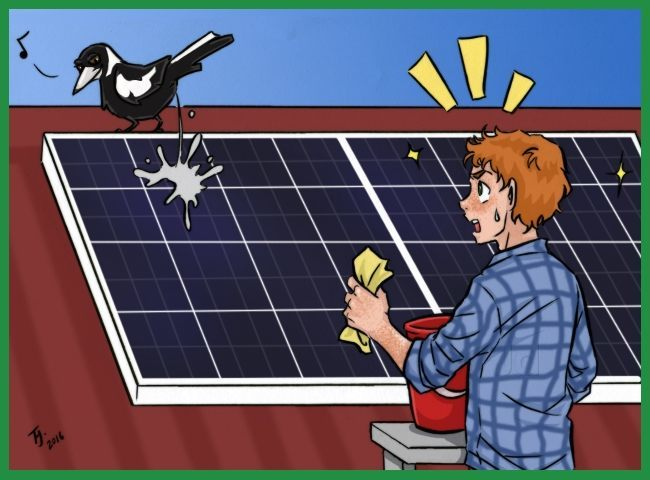 Solar Panel Cleaning Kit