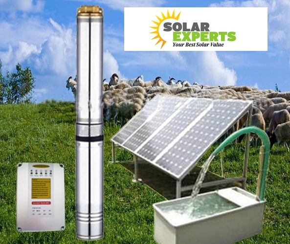 2hp solar water pump price in india